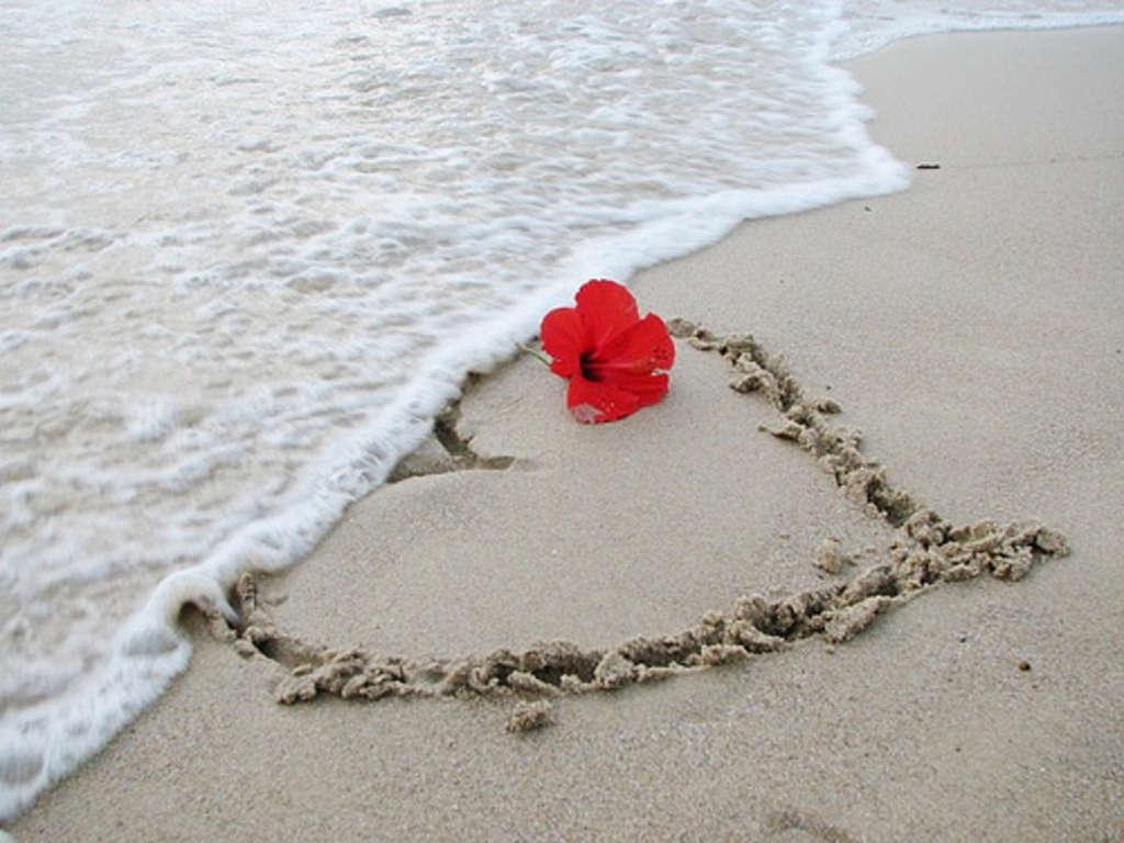 Fiere Matrimonio – Noi pensiamo al Viaggio di Nozze