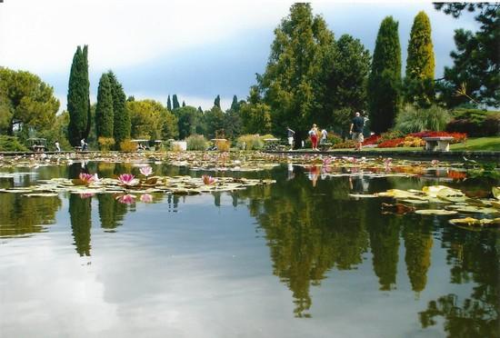 Parco Sigurtà, Valeggio sul Mincio e Borghetto – DOMENICA 11 GIUGNO 2017