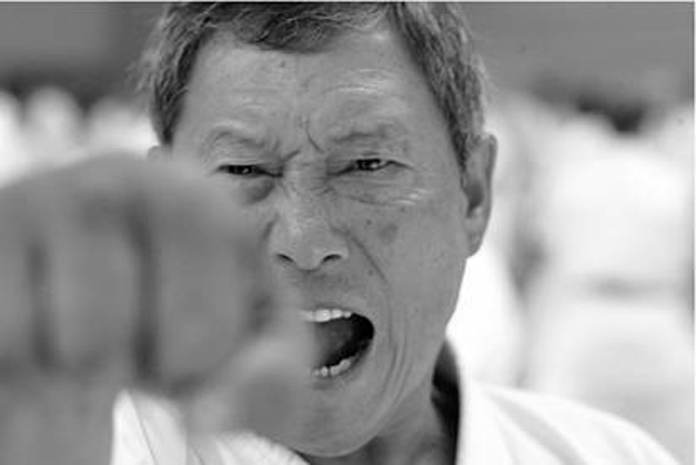 Arte Rispetto e Passione – Karate WSKA 2017 Treviso
