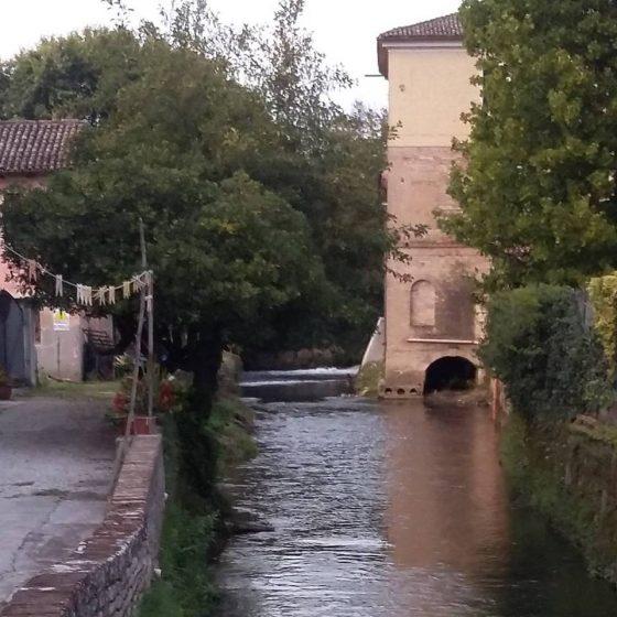 Passeggiata lungo il Sile – il Fiume di Treviso e non solo…