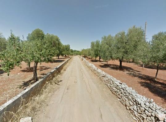 bike puglia - Puglia 26/09 –04/10-2020 Valle d'Itria, Salento e Murgia