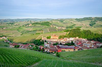 Italia Piemonte LAnghe alba - Torino, le Langhe e le Regge reali