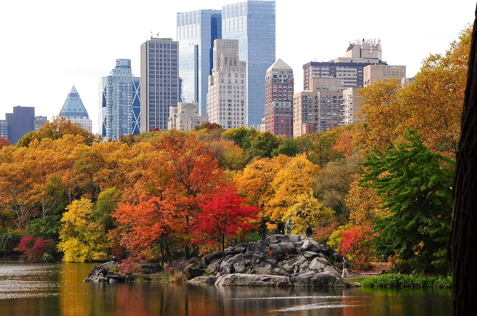 New York autumn - Autunno a New York