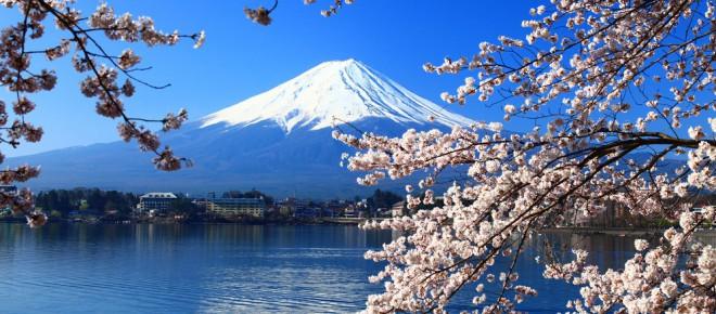 fioritura ciliegi giappone - Un altro Pianeta - Giappone